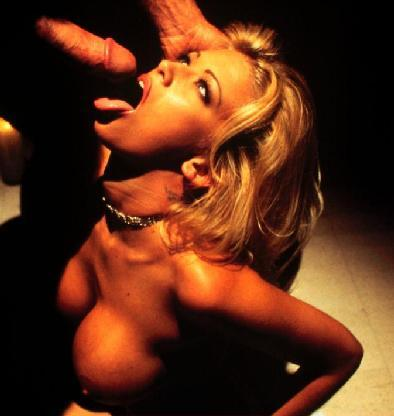 from Rayan pamala anderson sucking cock