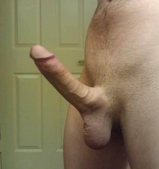 Average Penis Length Hard