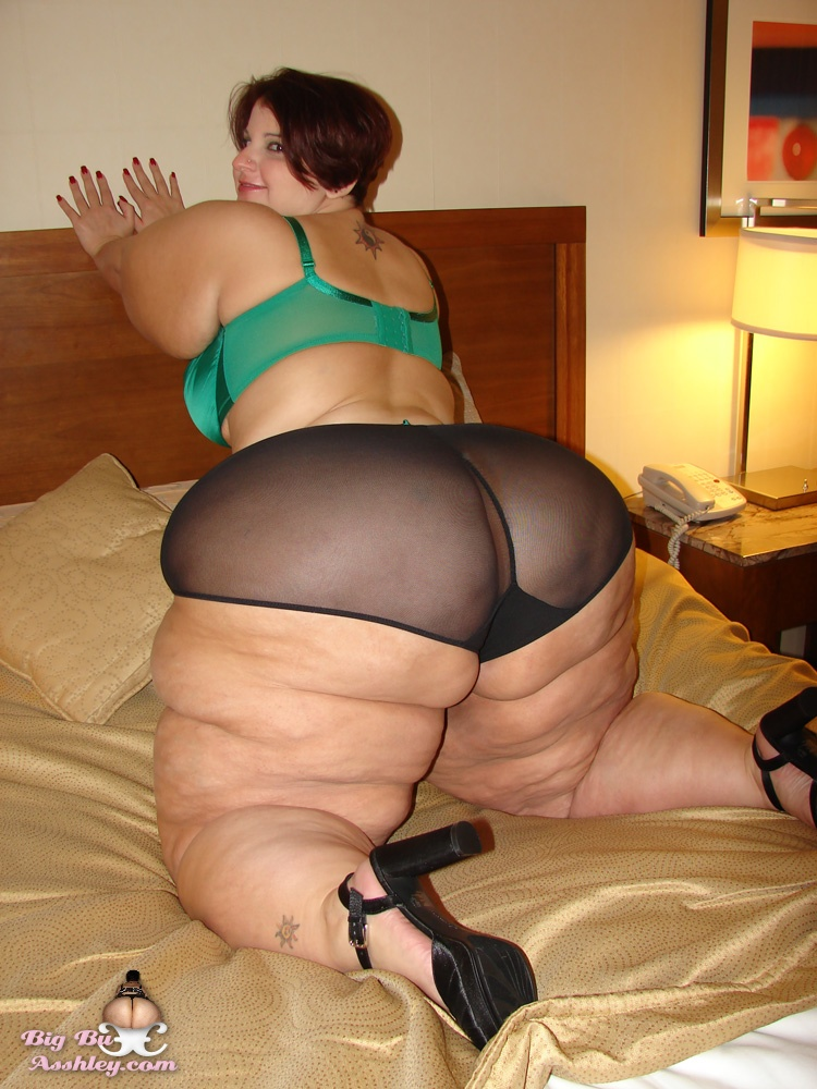 ashley big butt - Ashley bbw porn - Ashley big butt ssbbw xxx showing media posts for ashley  big butt