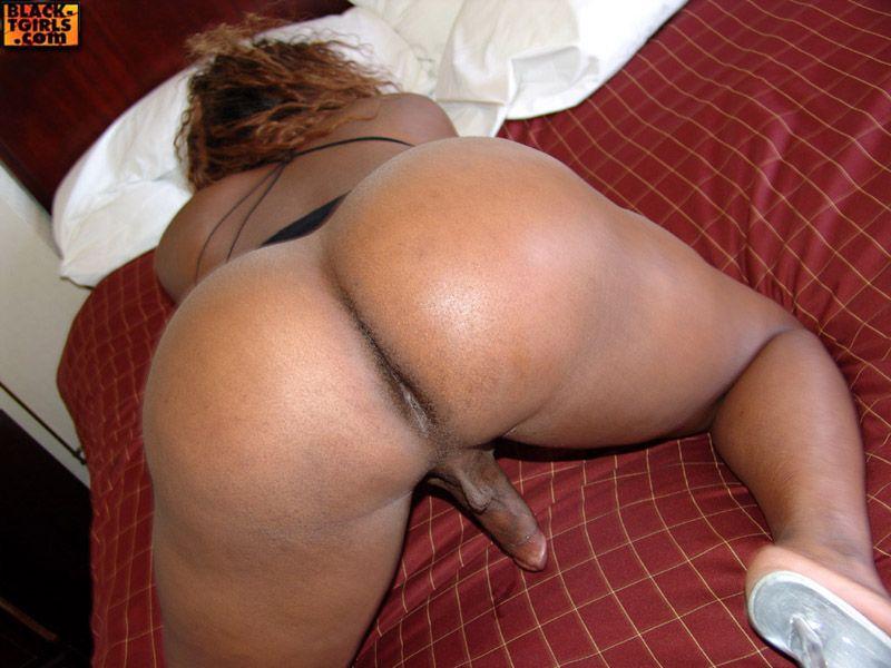 Big Booty Latina Black Cock