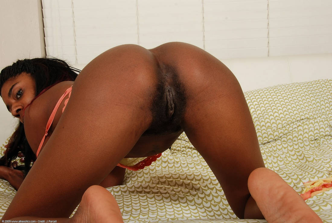 Quite tempting Big booty black chicks naked pussy confirm. All