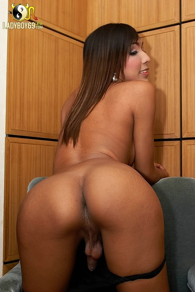shemales with big booty № 69978