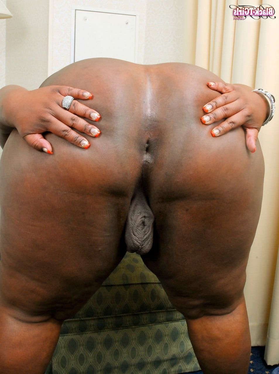 Black assholes pictures galleries