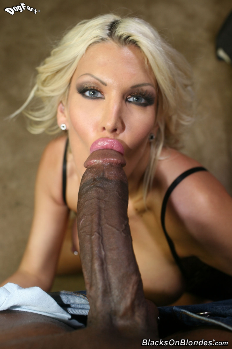 Black lips suck a hard black cock