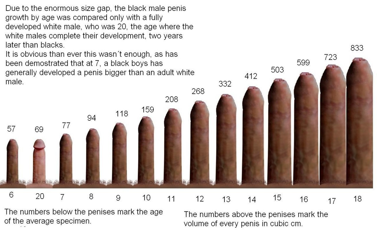 average porn star penis length