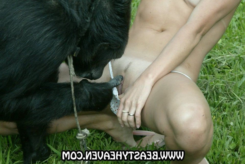 Girl sucks monkey cock