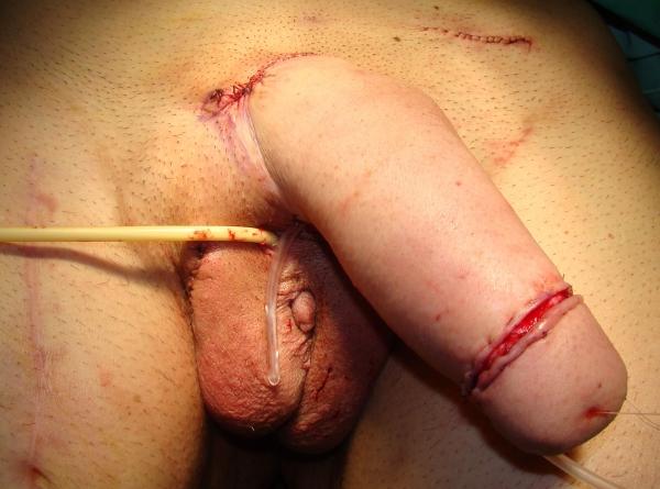 Porn online photo naked girl